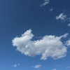見あげてみよう、ちっちゃい空も