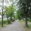 下谷神社で夏祭り