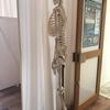 体幹を整え腰の不調改善