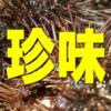 日本珍味事典♪
