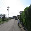 歩いて再び京の都へ 旧中山道69次夫婦歩き旅 第33回 1日目  後編 美江寺宿~どこまでかな?