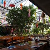 タイ、ミャンマー旅行 DAY2*チェンマイ お昼?ごはん