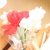 5月12日(日)は「母の日」