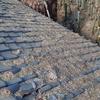 屋根の上の葉っぱは雨漏りの原因にもなるので掃除したほうがいい。