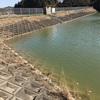 『渡辺池』静岡県掛川野池群バス釣り完全攻略マップ