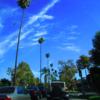 LA発!マンハッタンビーチ【おすすめ穴場のローカルビーチ  】ラスベガス&ロサンゼルス 4泊6日の2016年夏旅!!
