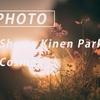 昭和記念公園で過ごす休日の夕方:Sony α7 III + SEL24F14GM