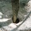 5月 残雪と新緑の鶴間池へ。