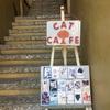 ウブドのCat Cafe