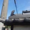 建物の屋根や塀などに載ってる飾り瓦にもいろんな意味があります。