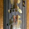 黒龍 いっちょらい(黒龍酒造)