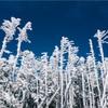 北八ヶ岳・高見石小屋で過ごすクリスマス2018&今シーズン初雪山