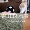 ラテパパの勝手な妄想編☆ラテちゃんの将来の夢はは日本代表?