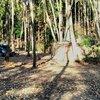 キャンプレポNo.17サンタヒルズオートキャンプ場(2日目)