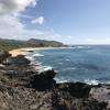 ハワイ旅行⑤オアフ島1周で癒されて*景色+感想