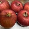 秋・冬の旬の果物 林檎