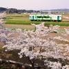 【ホテル周辺情報】由利高原鉄道「こいのぼり列車」♪