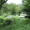勝俣部長の健康体質作り・・・・高尾山「健康を体感する」(378)