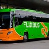 フランクフルトからFlixBus(フリックスバス)でヴュルツブルクへ移動!