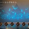 アモンケット――シングルトン攻略デッキを紹介!