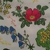 六花亭の謎商品 「いつものアレ」 【食べてみた⑤】