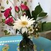 お花のサブスク Bloomee 12月まで再び休止