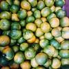 台風とかお肉が安いとかみかんとか柿、そしてドラクエウォーク