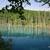 ピイェ・フラヌイ作戦 Day2-2 青い池