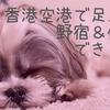 香港 デモの影響で空港に足止め(涙)香港国際空港で仮眠はできるのか?