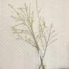 枝ものを飾る:2月