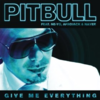 Pitbull & Ne-Yo - Give me everything 歌詞和訳