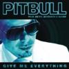 Pitbull & Ne-Yo - Give me everything 歌詞和訳