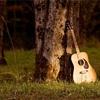 ギターがまともに弾けない話〜超初心者向け・ギターが弾けるようになるというよりも弾けてる感出すための方法〜③初心者下の下の上の上の下編・弾き語りとベースも無理やりやってみよう