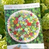 韓国版『美しいセダムの寄せ植え』受注販売!