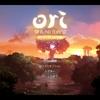 幻想的な世界が織りなすPC,XBOX2Dアクション死にゲー「Ori and the Blind Forest(オリとくらやみの森)Definitive Edition」をクリアしたので感想