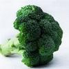 ビタミン野菜『ブロッコリー』