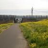 週末はモヤモヤ/ハーフマラソンランキング