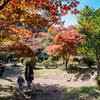 北鎌倉から源氏山公園へハイキング