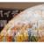 【バイデン大統領】新型コロナの起源の調査を指示