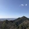 高知の鷲尾山, ゆっくり景色の変化を楽しめる手軽な山だった!