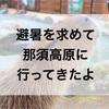 避暑を求めて…那須高原一泊家族旅行に行ってきました!