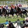 【ダービー卿チャレンジトロフィー 2020予想】追い切り・ラップ適性・レース傾向考察 & 各馬評価まとめ / ◎ポイントは遡ること約1年半・・・