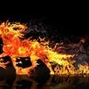 もう一つの本能寺の変の話−大河ドラマ『麒麟がくる』放送開始特別企画