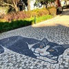 【ポルトガル】二度目のロックダウン⁉️ 2021年1月の現状
