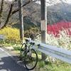 至高の「奥武蔵グリーンライン」と「GOKISOクライマーハブ」との再会