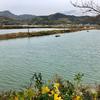 伯方塩田跡湖(仮称)(愛媛県今治)