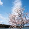 毎日一枚。「今年はもう。」おすすめ度:☆☆☆ ~写真で届ける伊勢志摩観光~