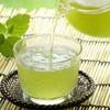 水出し緑茶の効能が凄いので作り方を変えてみたら激ウマでやめられない・・・