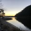 嵐山の竹林・・早起きは三文の得である