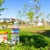 にちよ記:東伏見公園に行ってきた記